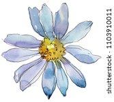 white daisy. floral botanical...   Shutterstock . vector #1103910011