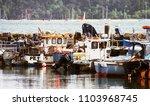 poole harbour  dorset  england  ...   Shutterstock . vector #1103968745
