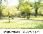 abstract blur city park bokeh... | Shutterstock . vector #1103974574