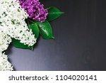 a bouquet of lilac lies on a... | Shutterstock . vector #1104020141