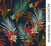 australia kangaroo paw flowers... | Shutterstock .eps vector #1104114734