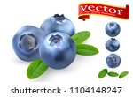 juicy ripe blueberries with... | Shutterstock .eps vector #1104148247
