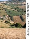 panoramic view of olive groves... | Shutterstock . vector #1104200099