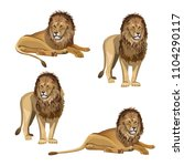 Collection Of Lion In Various...
