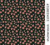 vector seamless pattern. pretty ... | Shutterstock .eps vector #1104338519