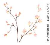watercolor hand painting...   Shutterstock . vector #1104347144
