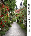 Stock photo wonderful alley of roses in the medieval town of visby 110435267