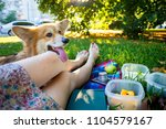 summer and happy fun holidays   ... | Shutterstock . vector #1104579167