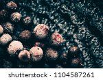 abstract background of black... | Shutterstock . vector #1104587261