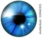 Human Iris With Some Highlight...