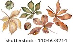 autumn chestnut leaves. leaf... | Shutterstock . vector #1104673214