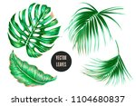 tropical palm leaves  monstera  ... | Shutterstock .eps vector #1104680837