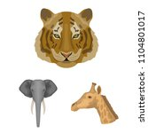 wild animal cartoon icons in... | Shutterstock . vector #1104801017