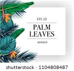 vector exotic pattern with palm ... | Shutterstock .eps vector #1104808487