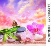 zen pebbles with bamboo leaves... | Shutterstock . vector #1104866969