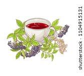 elderberry tea illustration | Shutterstock .eps vector #1104915131
