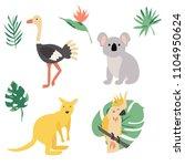 fauna of australia. vector... | Shutterstock .eps vector #1104950624