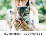 Stock photo happy girl with bright nails is holding small cute kitten in her hands smiling woman is playing 1104964811