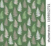 fern frond herbs  tropical... | Shutterstock .eps vector #1105012721