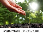 agriculture plant seeding... | Shutterstock . vector #1105176101