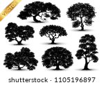 collection  realistic  trees... | Shutterstock .eps vector #1105196897