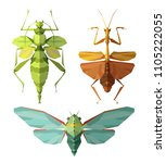 insect icons  vector set.... | Shutterstock .eps vector #1105222055