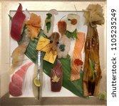 premium sushi set  otoro ...   Shutterstock . vector #1105235249