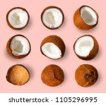 coconut pattern. half and whole ... | Shutterstock . vector #1105296995