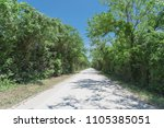 beautiful view country road... | Shutterstock . vector #1105385051