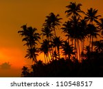 Beautiful Tropical Sunset On A...