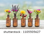 different wildflowers bottle... | Shutterstock . vector #1105505627