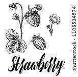 hand drawn vector illustration. ... | Shutterstock .eps vector #1105534574