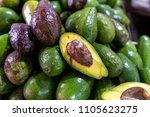 tropical fruit avocado ... | Shutterstock . vector #1105623275