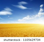 wheat field and sun in the sky | Shutterstock . vector #1105629734