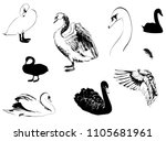 a set of different drawings ...   Shutterstock .eps vector #1105681961