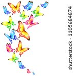 beautiful color butterflies set ...   Shutterstock . vector #1105684874