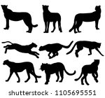 vector  silhouette of jaguar ... | Shutterstock .eps vector #1105695551