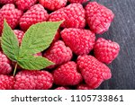 fresh raspberries with leaves... | Shutterstock . vector #1105733861