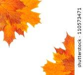 autumn border of maple leaves | Shutterstock . vector #110573471