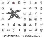 star fish icon. summer holidays ... | Shutterstock .eps vector #1105893677