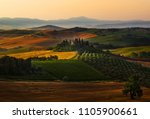 san quirico d'orcia  tuscany ... | Shutterstock . vector #1105900661