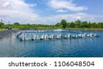 shrimp farm and water turbine | Shutterstock . vector #1106048504