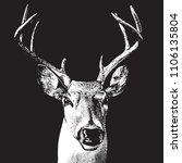 Deer Head   Graphic Engraving...