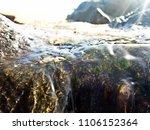 pure water on beach   Shutterstock . vector #1106152364