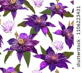 clematis purple flowers and... | Shutterstock . vector #1106223431
