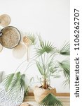exotic palm tree in room.... | Shutterstock . vector #1106262707
