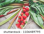 strawberry and rhubarb top view | Shutterstock . vector #1106489795