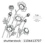 sketch floral botany... | Shutterstock .eps vector #1106613707