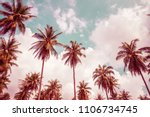 coconut palm trees   tropical... | Shutterstock . vector #1106734745