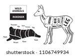 cut of roedeer set. poster... | Shutterstock .eps vector #1106749934